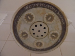 """The """"heavenly"""" shower."""